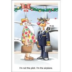 I'm Not The Pilot