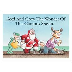 Seeding Is Wondrous