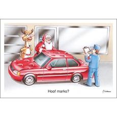 Hoof Marks?