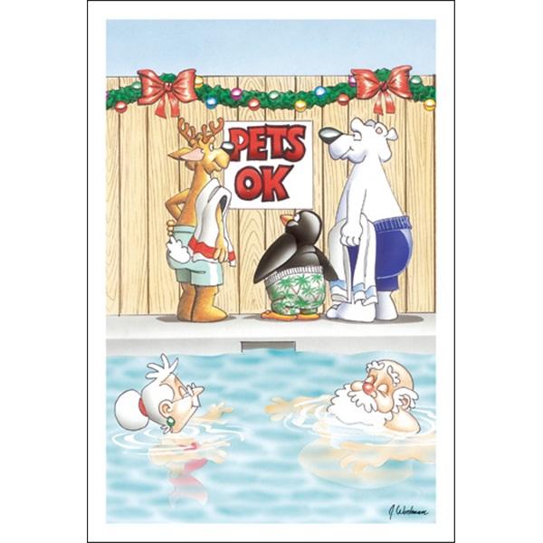 Pet's Ok In The Pool