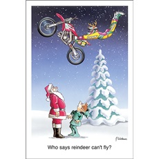 Who Says Reindeer Cant Fly