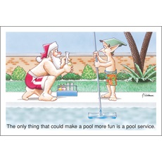 Pool Service Wanted