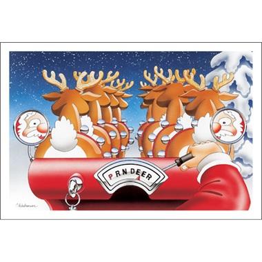Santa Driving Reindeer