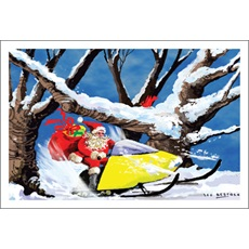 Santa Snowmobiling