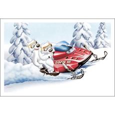 Polar Bears Snowmobiling