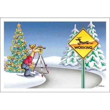 Careful Reindeer Working
